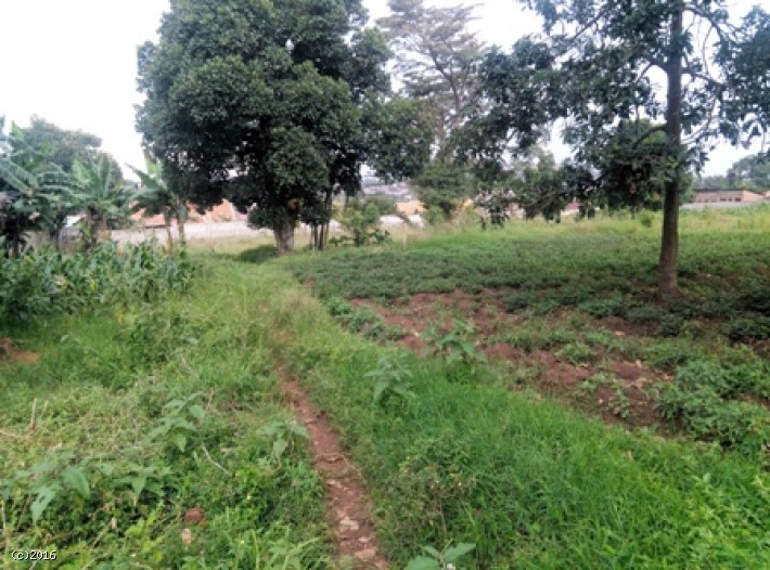 Plot 314, 315, 316 Block- 204 (Kwempe)